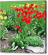 Tulip Gardenscape Canvas Print