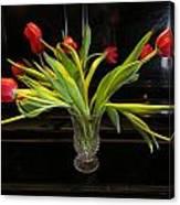 Tulip Mania 18 Canvas Print