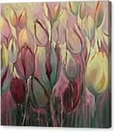 Tulip Mania Canvas Print