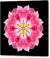 Tulip Peach Blossom IIi Flower Mandala Canvas Print