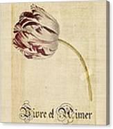Tulip - Vivre Et Aimer S02t03tr Canvas Print