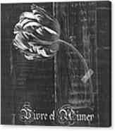 Tulip - Vivre Et Aimer S10t04t Canvas Print