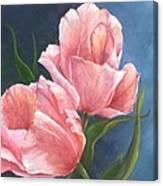 Tulip Waltz Canvas Print