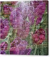 Tulip Waterfalls Canvas Print
