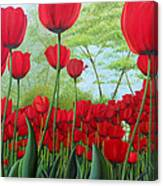 Tulipanes  Canvas Print