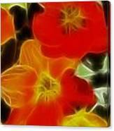 Tulips-6681-fractal Canvas Print