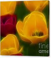 Tulips-6758-fractal Canvas Print