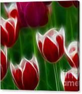 Tulips-6823-fractal Canvas Print