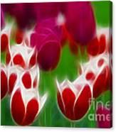 Tulips-6848-fractal Canvas Print