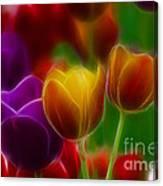 Tulips-7060-fractal Canvas Print