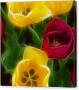 Tulips-7082-fractal Canvas Print