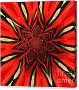 Tulips And Daffodils Under Star Glass Canvas Print