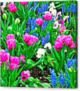 Tulips And Pansies And Grape Hyacinth By Lutheran Cathedral Of Helsinki-finland Canvas Print