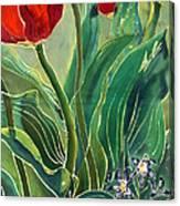 Tulips And Pushkinia Detail Canvas Print