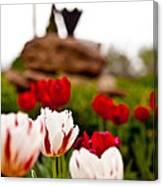 Tulips Ani Tsalagi Canvas Print