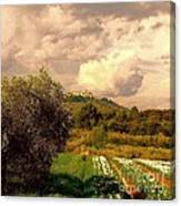 Tulips Field And Lurs Village In Provence France Canvas Print