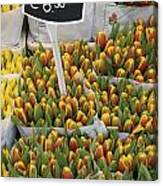 Tulips For Sale In Market, Close Up Canvas Print