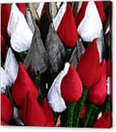 Tulips For Sale Canvas Print