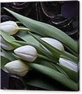 Tulips Laying In Wait Canvas Print