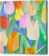 Tulips Multicolor Canvas Print