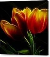 Tulips Of Light Canvas Print