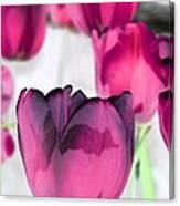 Tulips - Perfect Love - Photopower 2027 Canvas Print
