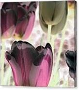 Tulips - Perfect Love - Photopower 2066 Canvas Print