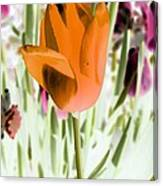 Tulips - Perfect Love - Photopower 2105 Canvas Print