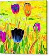 Tulips - Perfect Love - Photopower 2169 Canvas Print