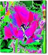 Tulips - Perfect Love - Photopower 2183 Canvas Print