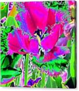 Tulips - Perfect Love - Photopower 2184 Canvas Print