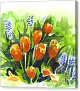 Tulips With Blue Grape Hyacinths Explosion Canvas Print
