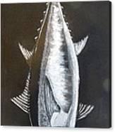 Tuna Canvas Print