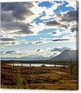 Tundra Burst Canvas Print