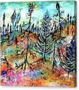 Quebec Taiga Landscape Canvas Print