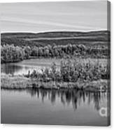 Tundra Pond Reflections Canvas Print