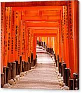 Tunnel Of Torii Gates, Fushimi Inari Canvas Print