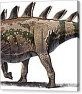 Tuojiangosaurus Multispinus Dinosaur Canvas Print