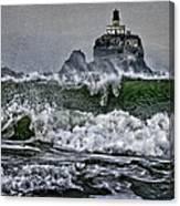 Turbulent Waters Canvas Print