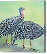 Turkey Trot Girls Canvas Print