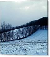 Turkeys In A Winter Field Canvas Print