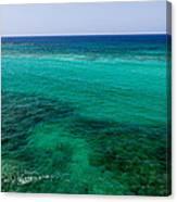 Turks Turquoise Canvas Print