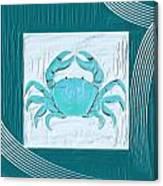 Turquoise Seashells Xix Canvas Print