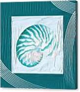 Turquoise Seashells Xxi Canvas Print