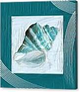 Turquoise Seashells Xxii Canvas Print
