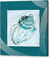 Turquoise Seashells Xxiv Canvas Print