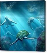 Turtle Alley Canvas Print