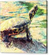 Turtle Brave Canvas Print