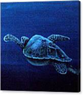 Turtle In The Red Sea Canvas Print