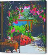 Tuscan Courtyard Canvas Print